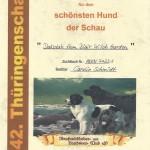 Dakotah Schönster Hund Thüringenschau