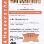 August NLC Hessenschau Jüngstenklasse SG2
